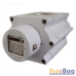 Счетчик газа ТЕМП G160 1/100